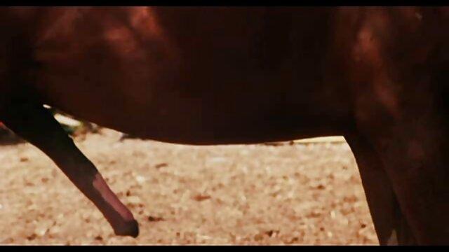 The Young Model pelicula insesto español (1971) (Estados Unidos) (ing) - xMackDaddy69